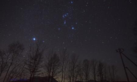 rohoroscope, stars, Zodiac